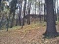 565 01 Choceň, Czech Republic - panoramio (48).jpg