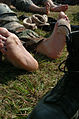 5th NCO and Soldier of the Year Competition Day Weapon Qualifica DVIDS31243.jpg