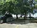658, Intramuros, Manila, Metro Manila, Philippines - panoramio (21).jpg