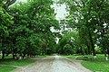 68-227-5015 каштаново-кленова алея, Антоніни.jpg