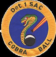 6th Strategic Wing Detachment 1 - Emblem
