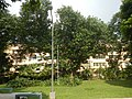 71Mehan Garden Ermita Manila Universidad de Manila 40.jpg