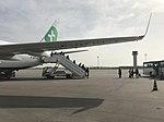 Aéroport international de Tunis-Carthage - mars 2018 - avion Transavia.jpg