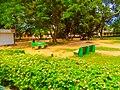 ABU love garden 01.jpg