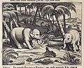 AMH-7002-KB Elephants pulling down palm trees.jpg