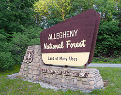 A welcome sign for Allegheny National Forest along Route 948