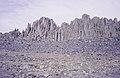 ASC Leiden - van Achterberg Collection - 14 - 25 - Un mur de barres de granit verticales naturelles - Ahaggar, Algérie - 1984.jpg
