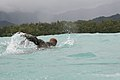 A U.S. Marine from Combat Assault Company, 3rd Marine Regiment swims to shore off the coast of Marine Corps Training Area Bellows, Hawaii, Aug. 25, 2009 090825-M-KL398-005.jpg