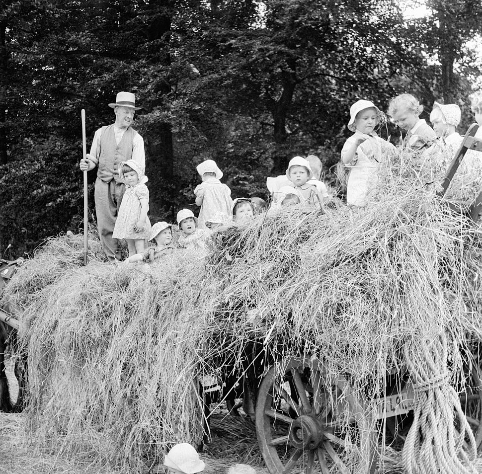 A group of young evacuees sit on a hay cart outside Chapel Cleeve Nursery in Washford, Somerset, 1942. D9209