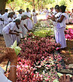 A ritual, Hindus preparing for lotus pooja.jpg