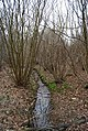 A small stream, North Bishopden Wood - geograph.org.uk - 1209783.jpg