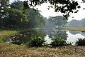 Acharya Jagadish Chandra Bose Indian Botanic Garden - Howrah 2011-01-08 9725.JPG