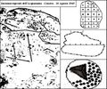 Acquasanta - Genova - Italia - 1965 - Pietra coppelle.jpg