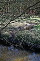 Across Pincey Brook to Down Hall estate, in Hatfield Heath, Essex, England 02.jpg