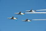 Air Show at Iruma Air Base 2012 - Blue Impulse (8168159476).jpg
