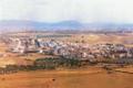 Alamillo1.png