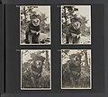 Albumblad met vier fotos van de hond Patiala, Bestanddeelnr 31 21.jpg