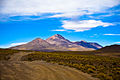 Alrededores de la Laguna Colorada - Bolivia.jpg