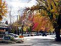 Anson St Corner - panoramio.jpg