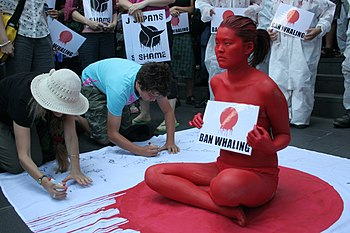 "An oriental woman has painted herself red holding a sign (while sitting down) that says ""Ban Whaling"" while a crowd around her signs a petition. She is sitting on a Japanese flag with red dripping down (presumably to symbolize blood)"
