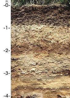 Antigo (soil) type of soil