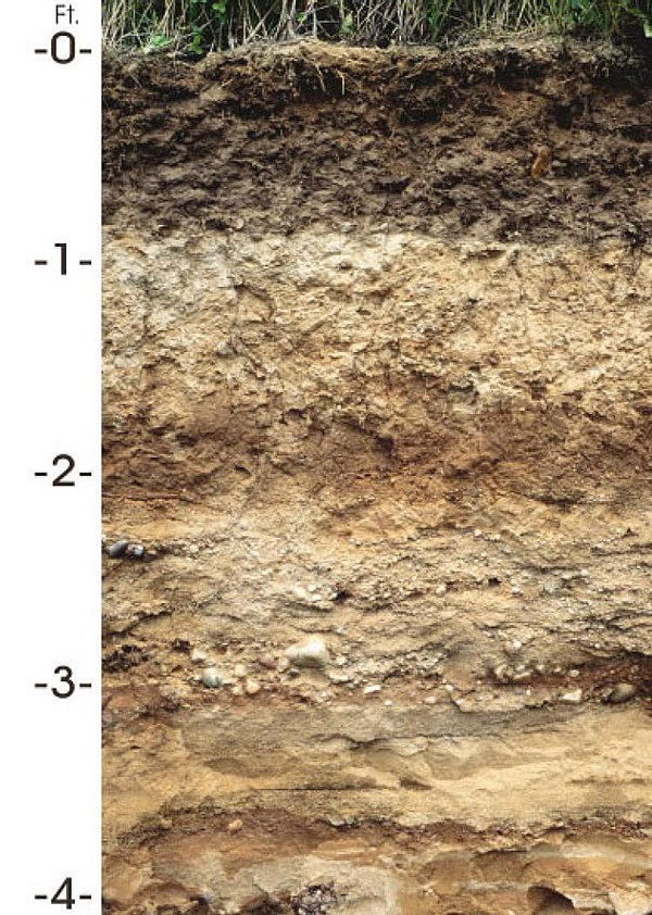 Soil in the united states for Soil wikipedia