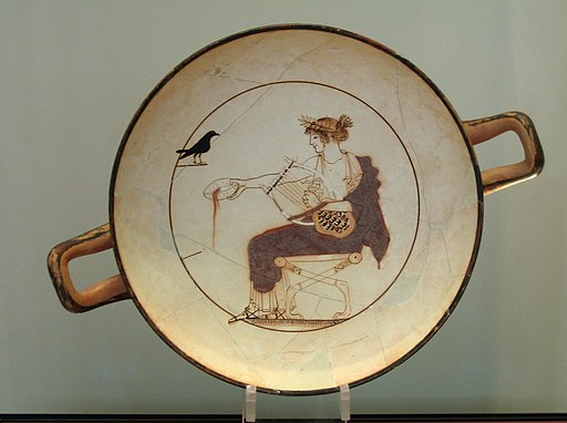 Apollo black bird AM Delphi 8140 - large