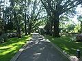 Arboretum Gaston Allard.JPG