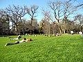 Arboretum Zürich 2012-03-28 16-30-31 (P7000).JPG