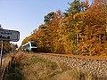 Arriva og efterår - panoramio.jpg