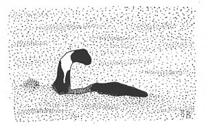 Champ (folklore) - Artistic representation of Sandra Mansi's 1977 photograph of the Lake Champlain Monster. Illustration by Benjamin Radford.