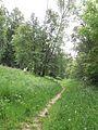 Auenwald-bei-Mühdorf-DSCN0286-WDPA-555522076-Muehldorf-BR-48.2350-LG-12.5276.jpg