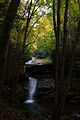 Autumn-waterfall-cascades-fall-foliage - West Virginia - ForestWander.jpg