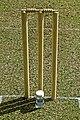 Aythorpe Roding Cricket Club pitch wicket stumps and bales, Essex, England 2.jpg