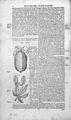 BAUHIN; Historia Wellcome L0031982.jpg