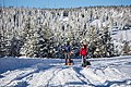 Backcoutry campers ski-touring the Interior of the park (31018628663).jpg