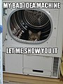 Bad Idea Machine lolcat.jpg