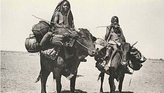 Messiria tribe - This photo was taken during the early 20th century but could equally well be modern.  The Baggara in general and the Messiria in particular still frequently travel on ox-back.