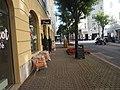 Bahnhofstraße in Klagenfurt.jpg