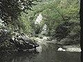Banat, Nera Canyon - panoramio (48).jpg