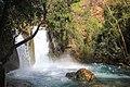 Banias river (49).jpg
