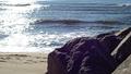 Beach 2 (38741280175).png