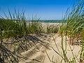 Beach dune Rennesse Holland Strand (20302646436).jpg