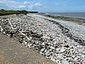 Beach to the west of Hinkley Point - geograph.org.uk - 1357110.jpg