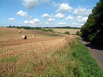 Chelsham - Typical Chelsham countryside at Beddlestead Lane