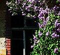 Beelitz-Heilstätten, Bild 3.jpg