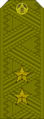 Belarus MIA—02 Lieutenant General rank insignia (Olive)—Removable.png