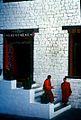 Bhutan (32549747).jpg