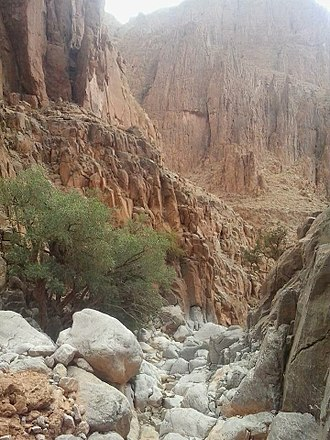 Biskra - A Giant Canyon at proximity of Biskra