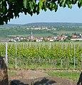 Blick auf Kallstadt - panoramio.jpg